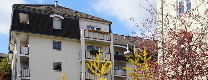 Wohnbau Frankfurt Wohnung Mieten In Frankfurt Oder